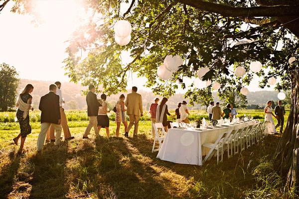 Wedding in a farm