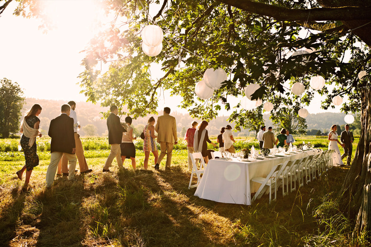 Wedding in a farm